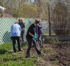 Teamwork to clear the garden