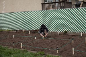 Stringing out the plots